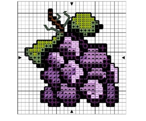 DIAGRAMME - GRAPPE DE RAISIN AU POINT COMPTE