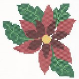 POINT COMPTE - POINSETTIA